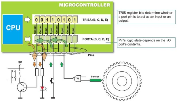 PIC Microcontrollers - Programming in BASIC schematic