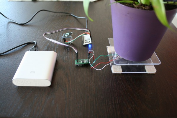 ESP8266: Meet Thirsdee, the Intelligent Plant Helper!