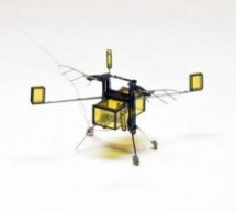 ROBOBEE – A FLYING MICROBOT THAT CAN PERFORM SEARCH AND RESCUE MISSIONS