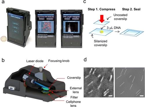 Smartphone Becomes DNA diagnostic tool