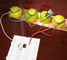 Tiny AVR Microcontroller Runs on a Fruit Battery