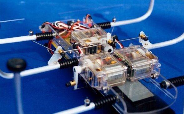 SPIDER ROBOT SHOW (11)