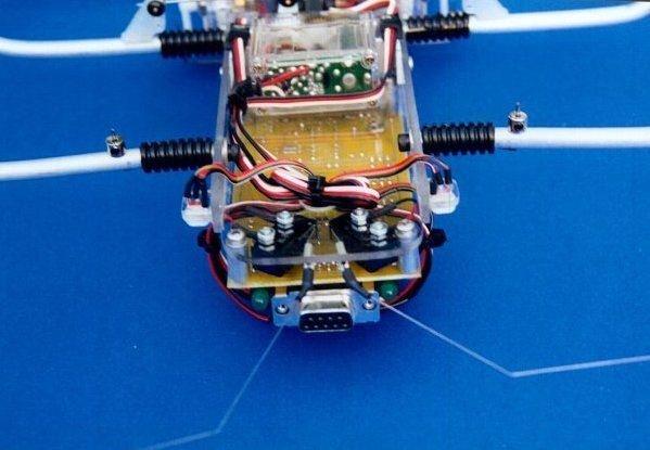 SPIDER ROBOT SHOW (2)