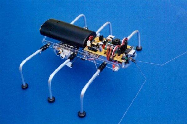 SPIDER ROBOT SHOW (4)