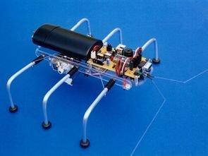 SIX-LEGGED BASIC STAMP2 SPIDER ROBOT PROJECT