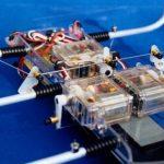 SPIDER ROBOT SHOW(11)