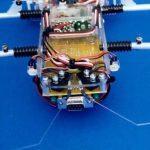 SPIDER ROBOT SHOW(2)