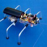 SPIDER ROBOT SHOW(4)