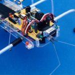 SPIDER ROBOT SHOW(5)