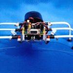 SPIDER ROBOT SHOW(7)