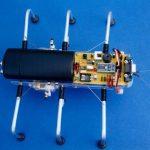 SPIDER ROBOT SHOW(8)
